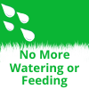 Our artificial grass Sevenoaks does not need watering or feeding